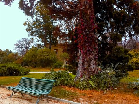 1028 Champs-Élysées befor park1Fのコピー
