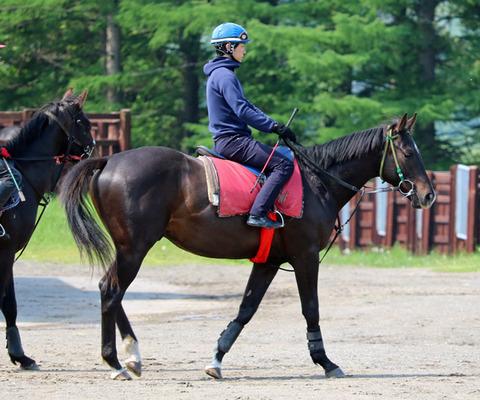 黛弘人騎手 (1)