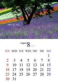 2009年8月カレンダー