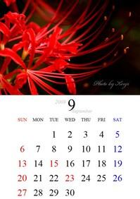 200909カレンダー(ヒガンバナ)