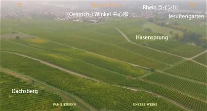 Winkel-Weinberg