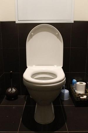 toilet-663707_640