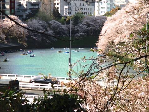 春 東京散歩 019