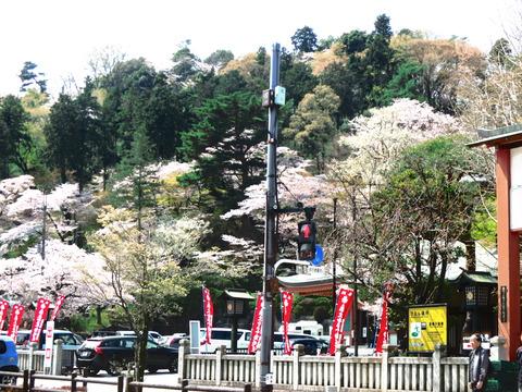 春 東京散歩 027