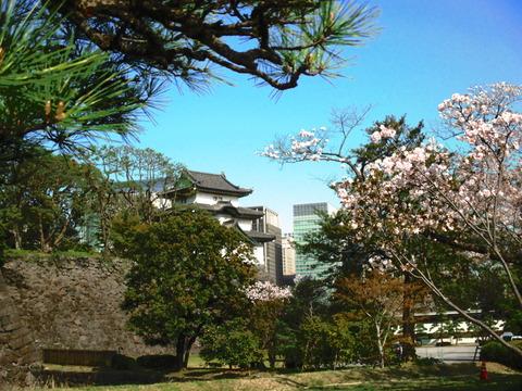 春 東京散歩 009
