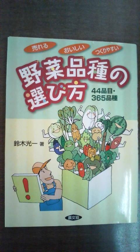野菜品種の選び方