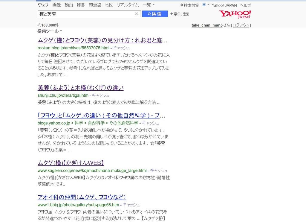 槿と芙蓉Yahoo!
