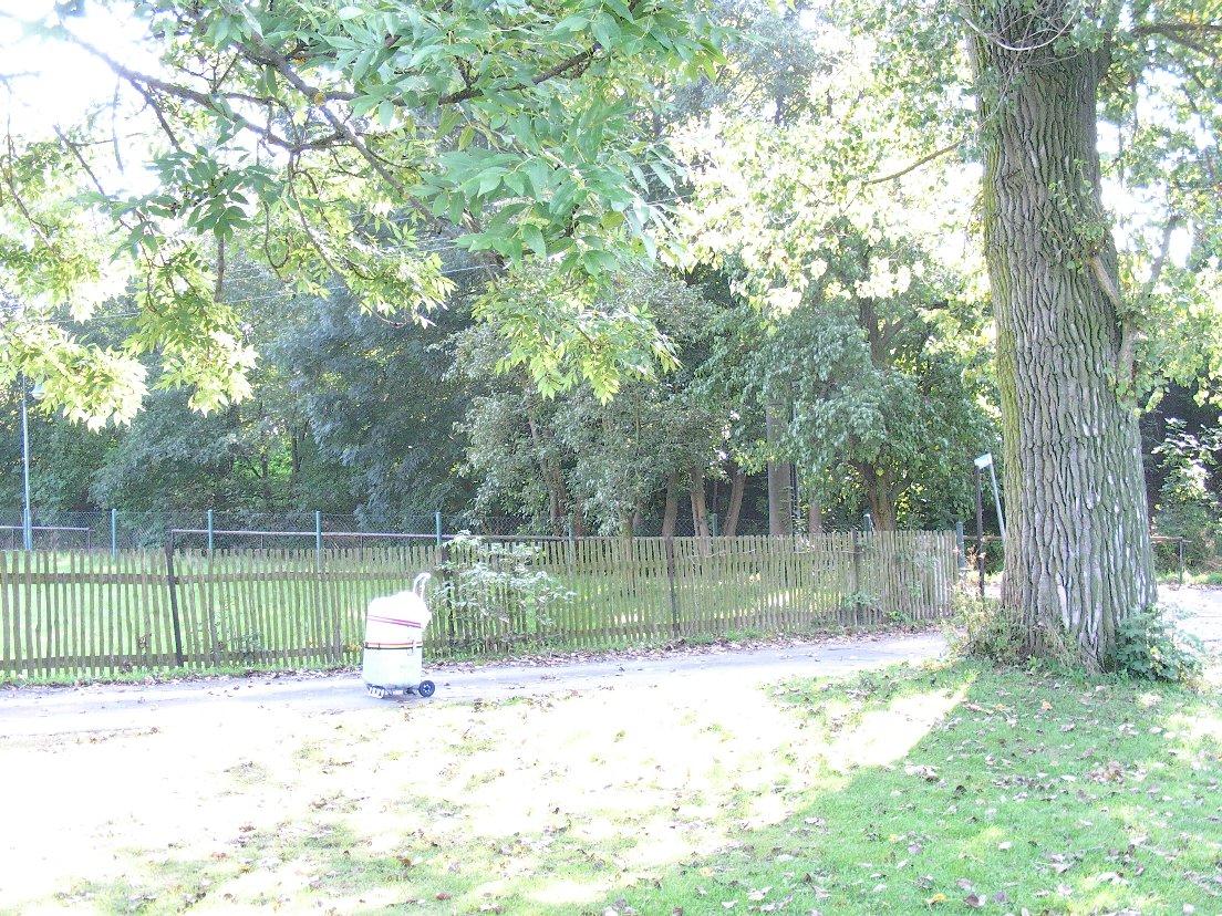 2009年9月19日(土)ジンゲル〜ドレスデン (104)