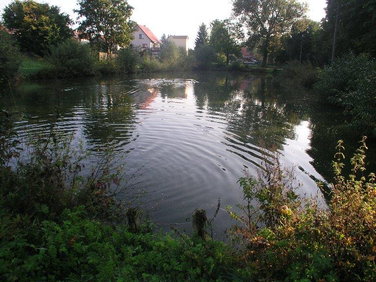 2009年9月19日(土)ジンゲル〜ドレスデン (43)