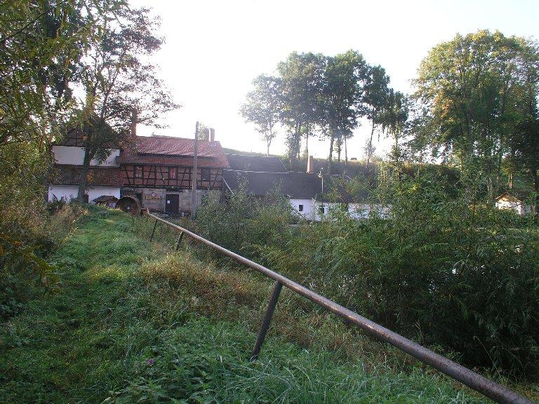 2009年9月19日(土)ジンゲル〜ドレスデン (45)