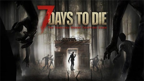 7 day