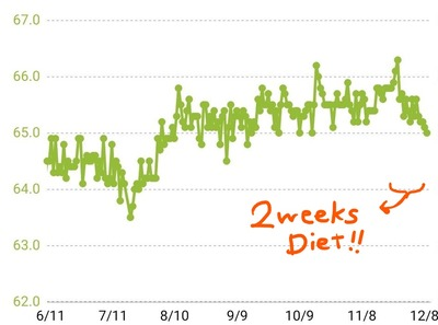 2weeks diet