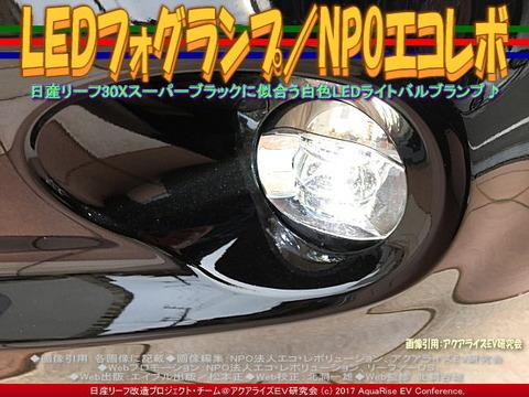 LEDフォグランプ/NPOエコレボ画像01
