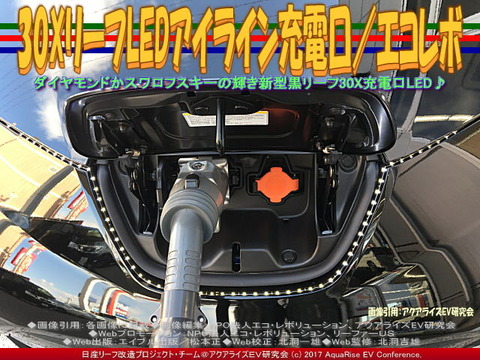 30XリーフLEDアイライン充電口/エコレボ(2)