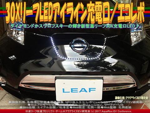 30XリーフLEDアイライン充電口/エコレボ