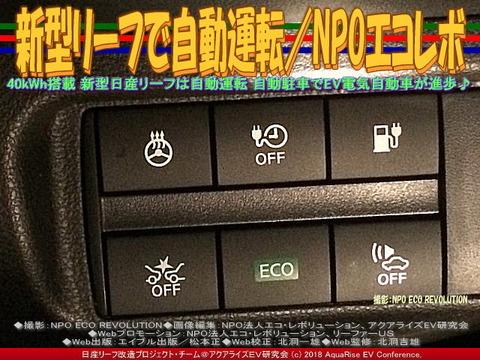 新型リーフで自動運転/NPOエコレボ画像