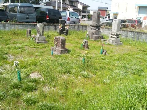 墓掃除 003