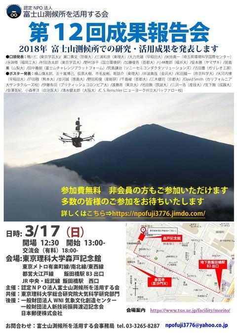 12成果報告会ちらし2019-03-05