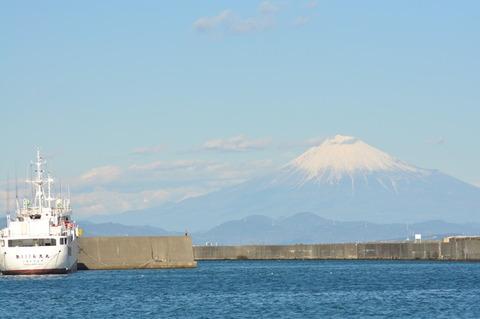焼津港から望む富士山-櫻井理事撮影