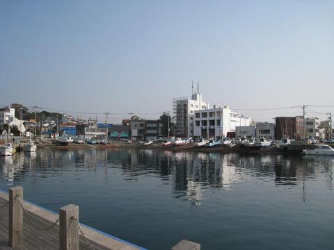 三浦三崎港3
