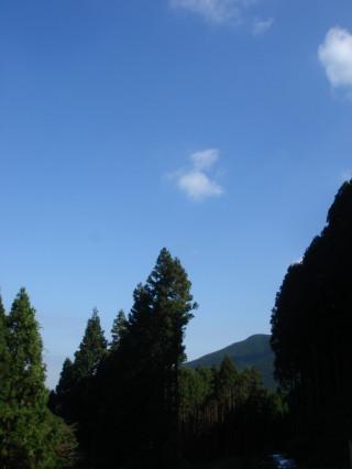 井原山31