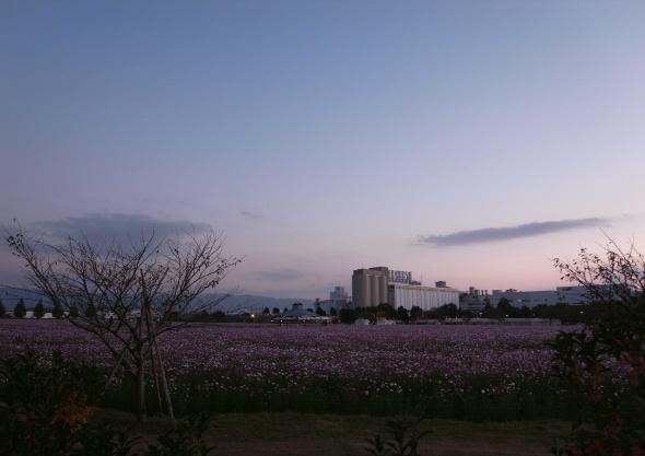 キリンビール甘木工場10