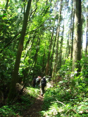 福智山登山37