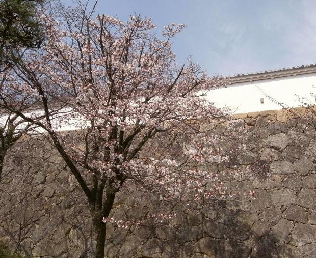 姫路城56