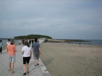 青島14a