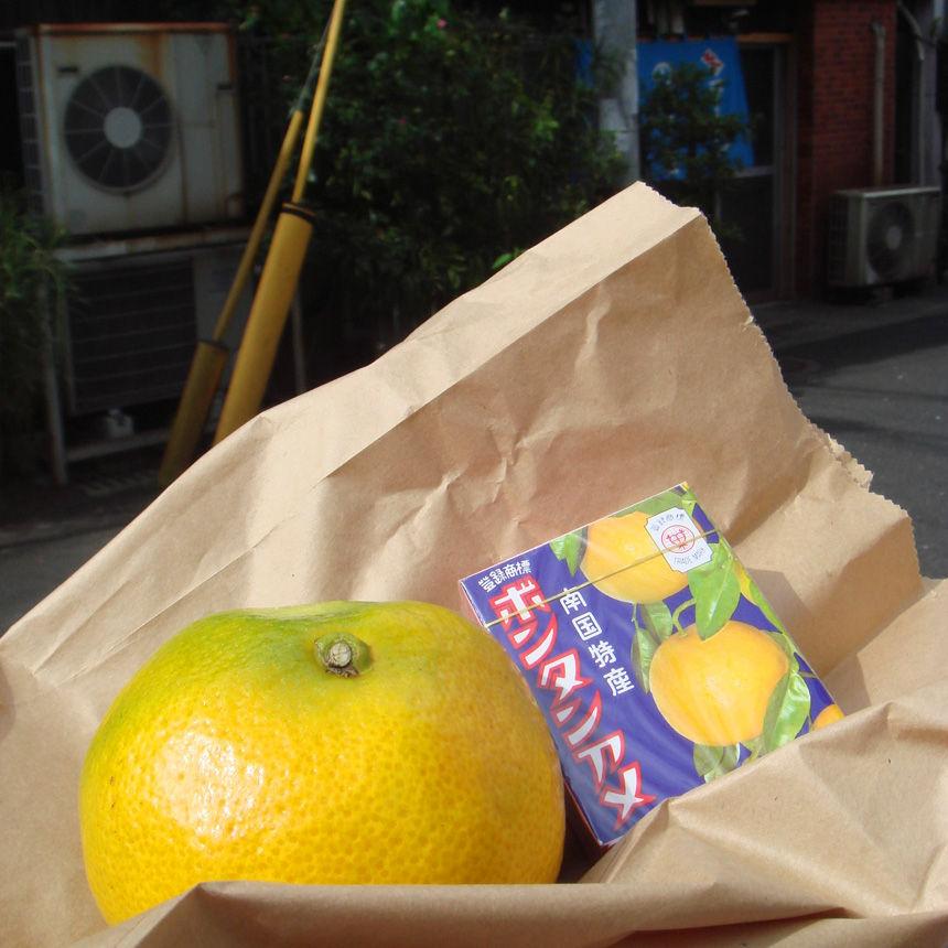 2007_08_11_noboru30