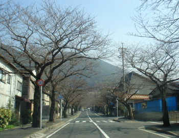 安部山公園10