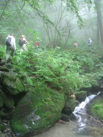 井原山39