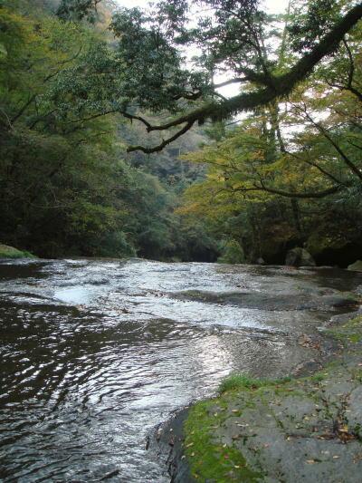 菊池渓谷47