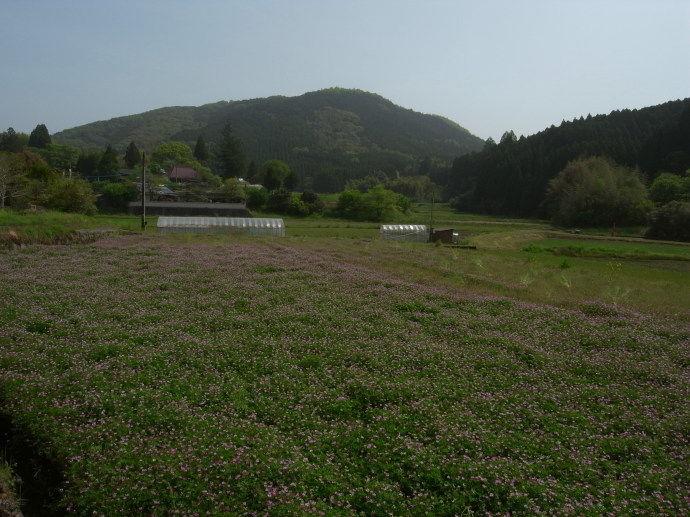 平山温泉62