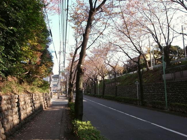 世田谷53