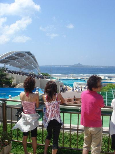 沖縄美ら海水族館40