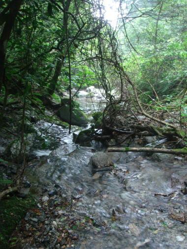 井原山33