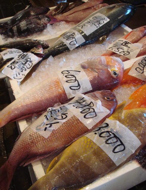 長浜鮮魚市場40