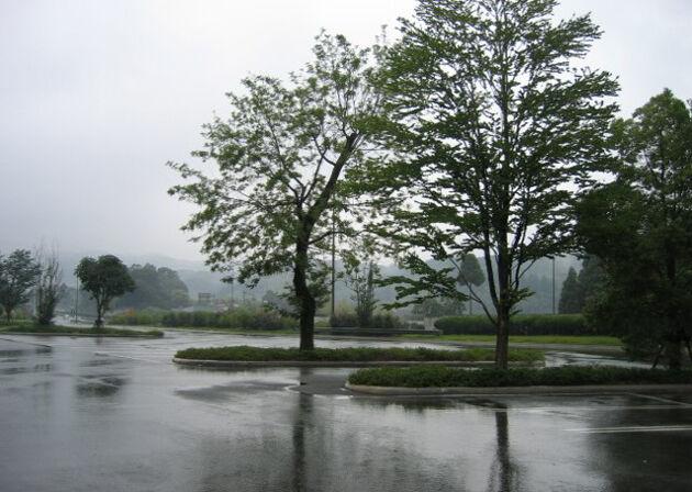 2004_05_30_kuamoto20