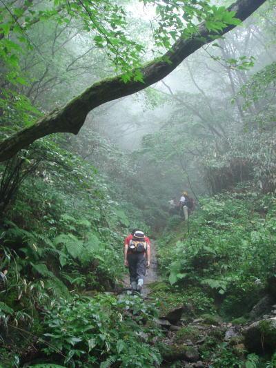 井原山54