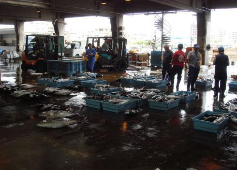 魚市場@鹿児島16