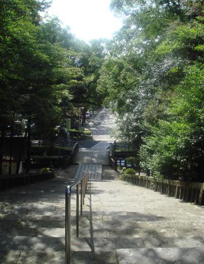 鹿児島神宮41