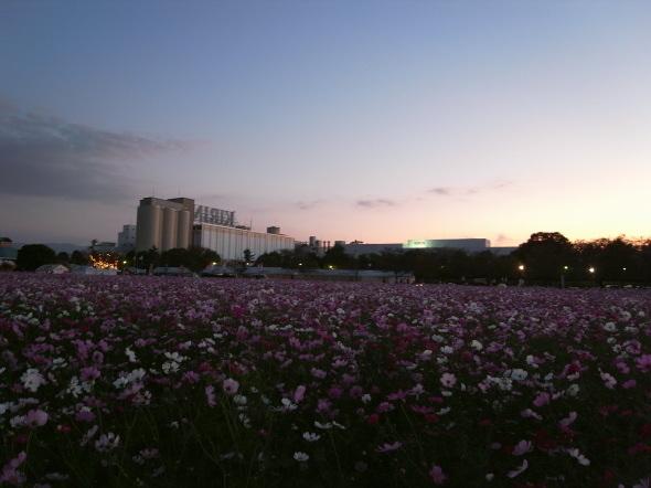 キリンビール甘木工場11