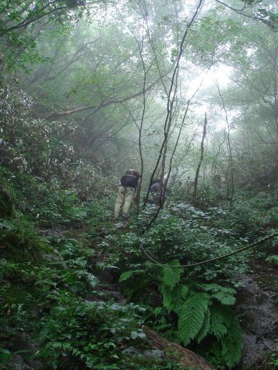 井原山55