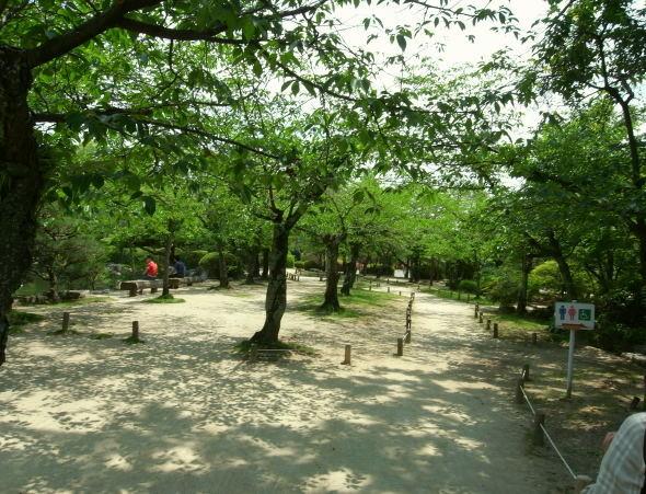 神野公園11