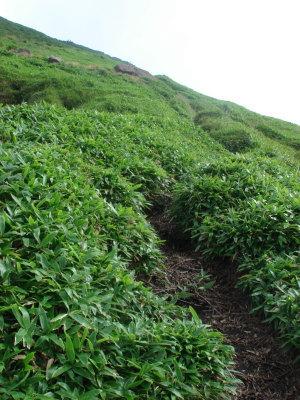 三俣山23