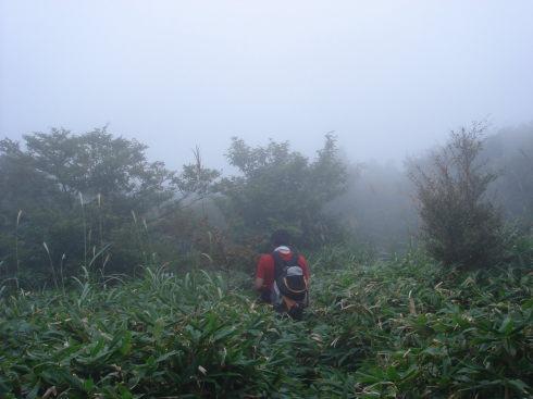 井原山56