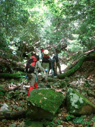 福智山登山38