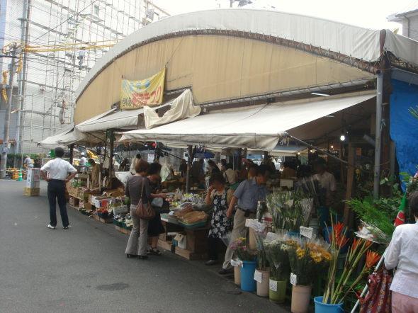 駅前市場24