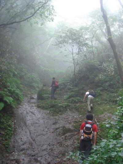 井原山53